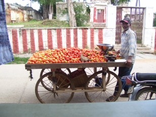 Micro-Eco. vegetable cart - India