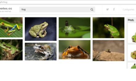 Moteur de recherche de photos gratuite