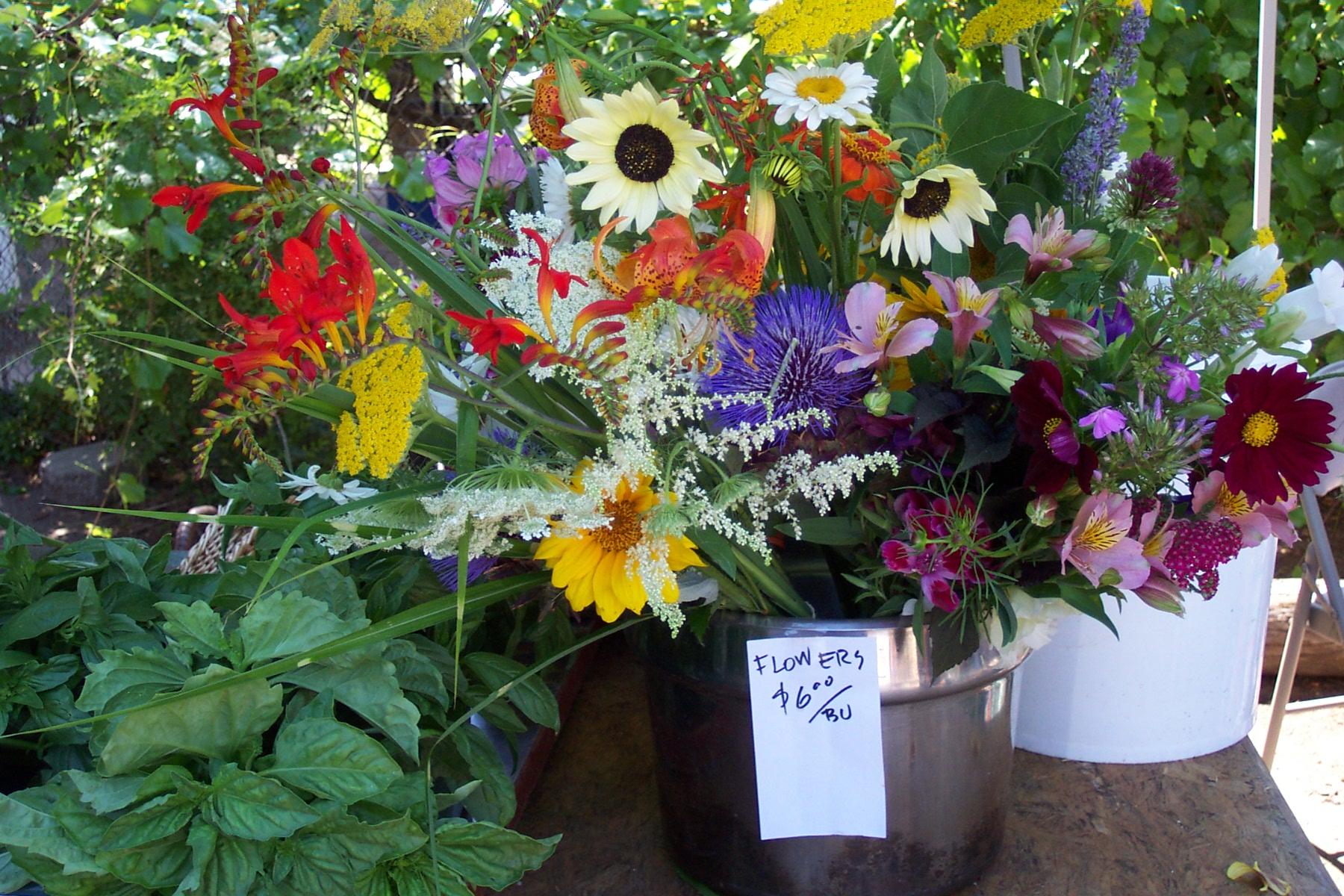 flower booth at Sutter Creek Market