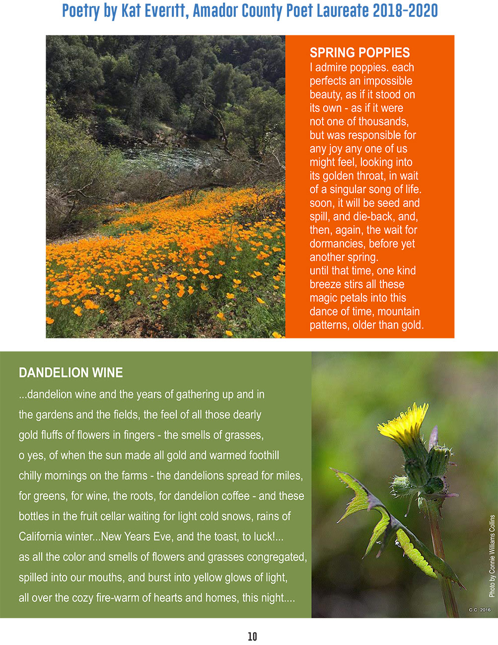 foa spring newsletter pg 10