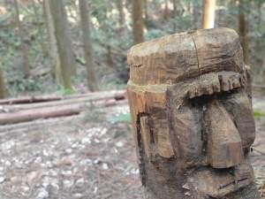 IMG20210214124304 - あまがさすの森散策
