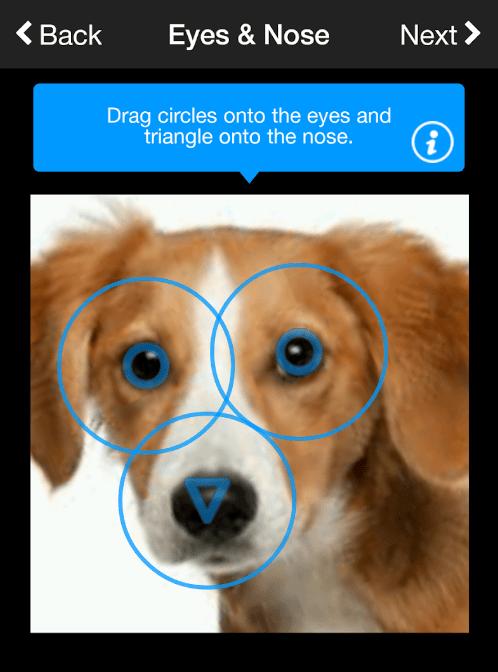 狗臉辨識已落伍:「這個部位」將成為新解 – 加點製造誌