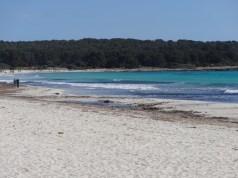 Spiaggia di Sa Coma