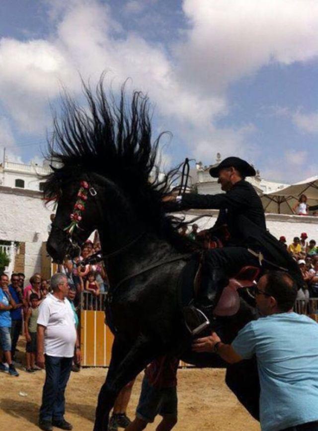 Cavallo tra la folla - Ciutadella