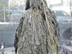 Il mostro delle saviettine igieniche - EMAYA - Diario de Mallorca