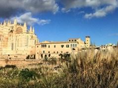 Cattedrale di Maiorca