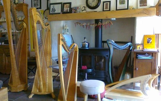 National Harp Day 2018 in Reidun's Harp Centre.