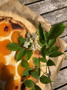Aprikosen-Holunder-Galette – ein Sommer-Traum
