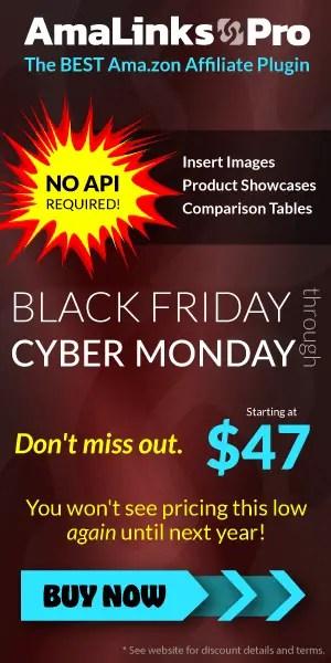 Black Friday Sale Promotion 300x600