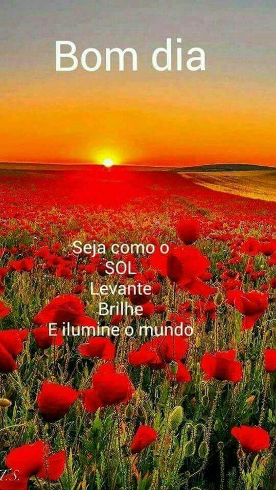Bom dia! Que o seu dia seja iluminado como o sol!