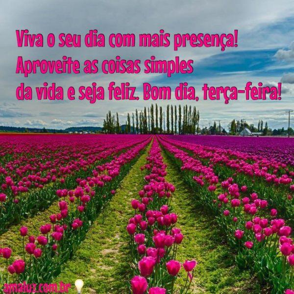 Bom dia terça feira! Viva  o seu dia com mais esperança, aproveite as coisas simples da vida e seja feliz.