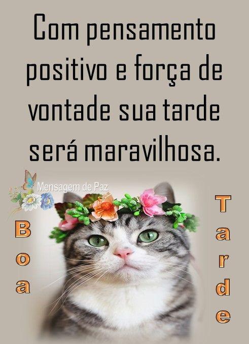Boa tarde! Com os pensamentos positivos tudo se torna mais especial