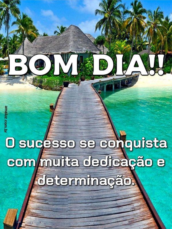 Bom dia, o sucesso se conquista com muita dedicação e determinação.