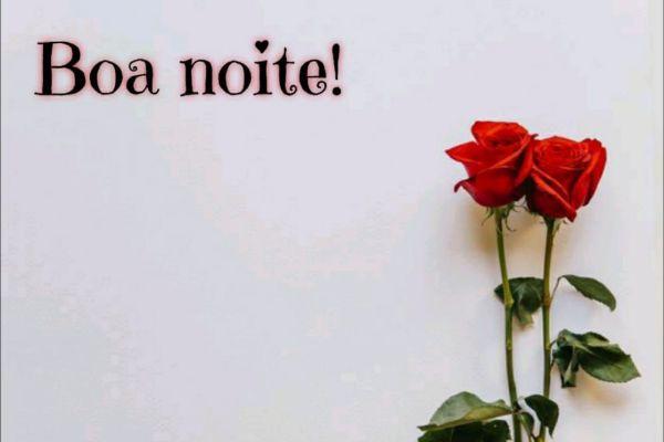 duas rosas vemelhas e boa noite