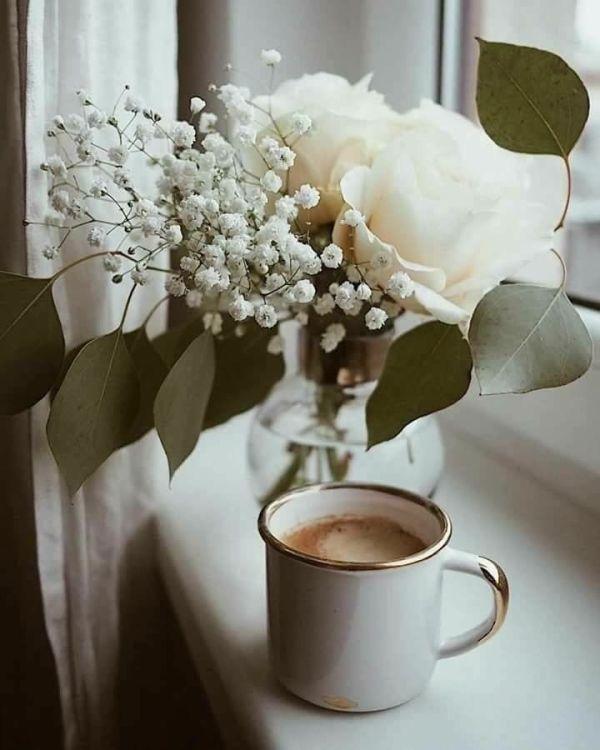 flor janela e copo de caputino