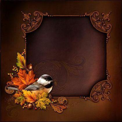 imagem de moldura marrom com passarinho