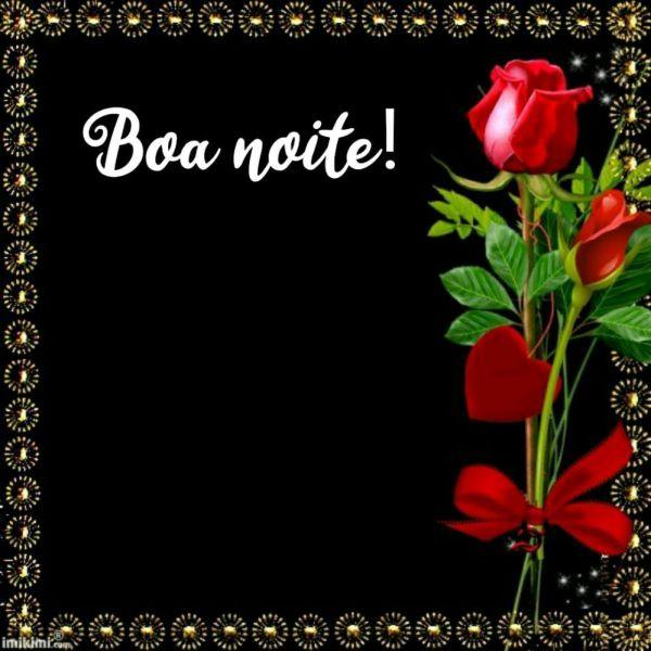 linda rosa vermelha com vundo preta e boa noite