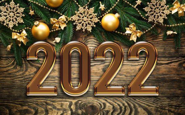 uma linda figurinha de 2022 para alegra seu ano novo