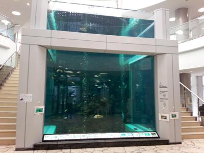 奄美大島海洋展示館
