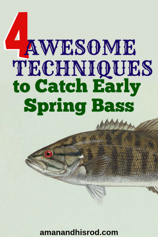 Pinterest image for catch early spring bass