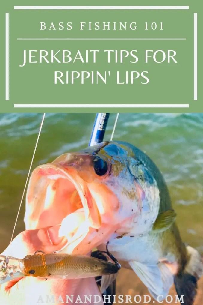 fish caught on lucky craft jerkbait pinterest image.