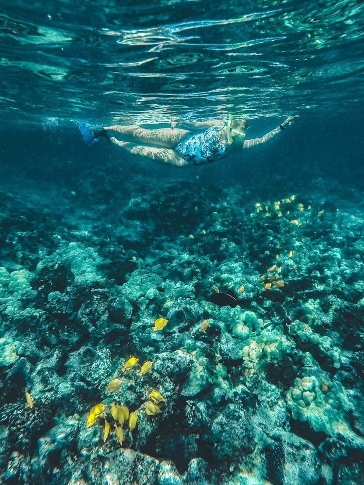 Woman snorkeling above coral and a school of yellow fish