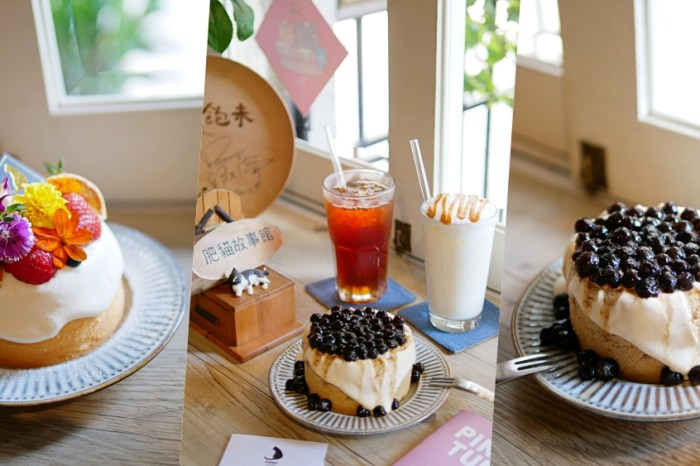 萌貓出沒!神農街尾文青咖啡店『肥貓咖啡』期間限定夢幻草莓戚風蛋糕吃起來!台南下午茶|台南寵物友善