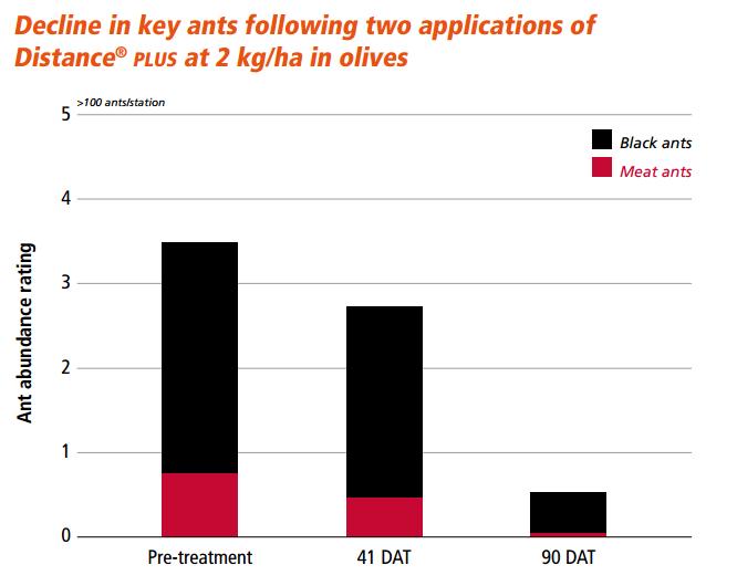ant-decline-olives1