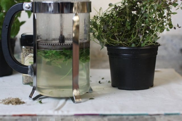 fresh thyme infusion