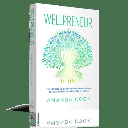 Wellpreneur_3D