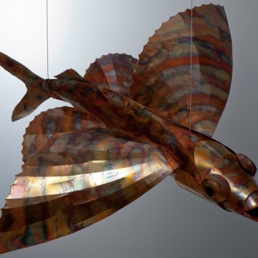 amanda_feher_sculpture_public_art_copper_and_stainless_steel_Flight_School_Flying_Fish_Strand Ephemera_Fish1.1