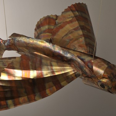 amanda_feher_sculpture_public_art_copper_and_stainless_steel_Flight_School_Flying_Fish_Strand Ephemera_Fish5.1
