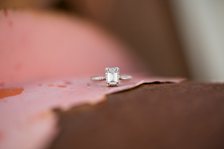 morgan-austin-southampton-county-engagement-61