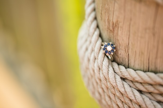 betsy-webster-pagoda-waterside-engagements-37