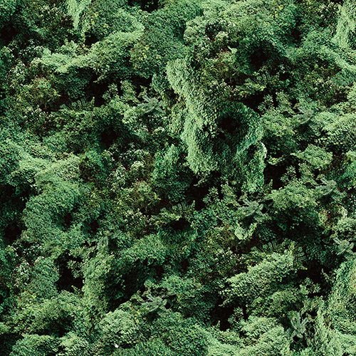 ivy-grid-7-flattened