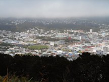 View from Mt Victoria - Wellington