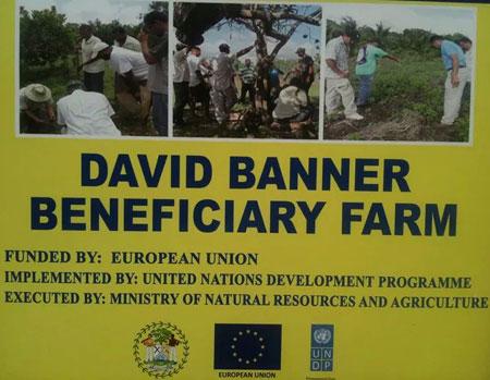 David-Banner-Beneficiary-Fa