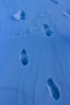 Having dared to walk across the frozen lake