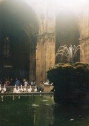 Cloister of Barcelona Cathedral