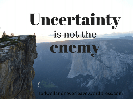 Uncertainty is not the enemy