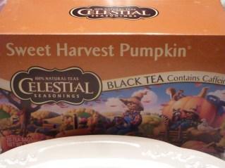 Pumpkin Tea!
