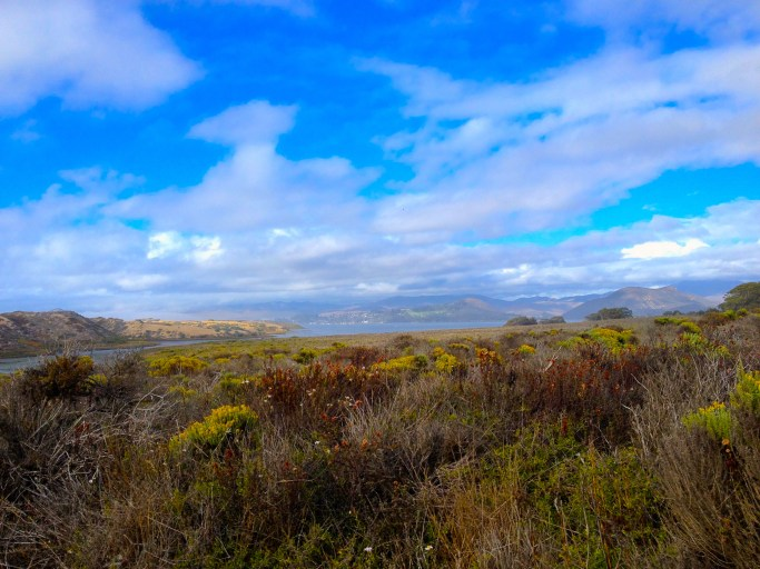 Romantic Los Osos hike. Photo by author.