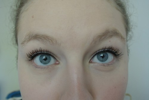 ud perversion mascara review