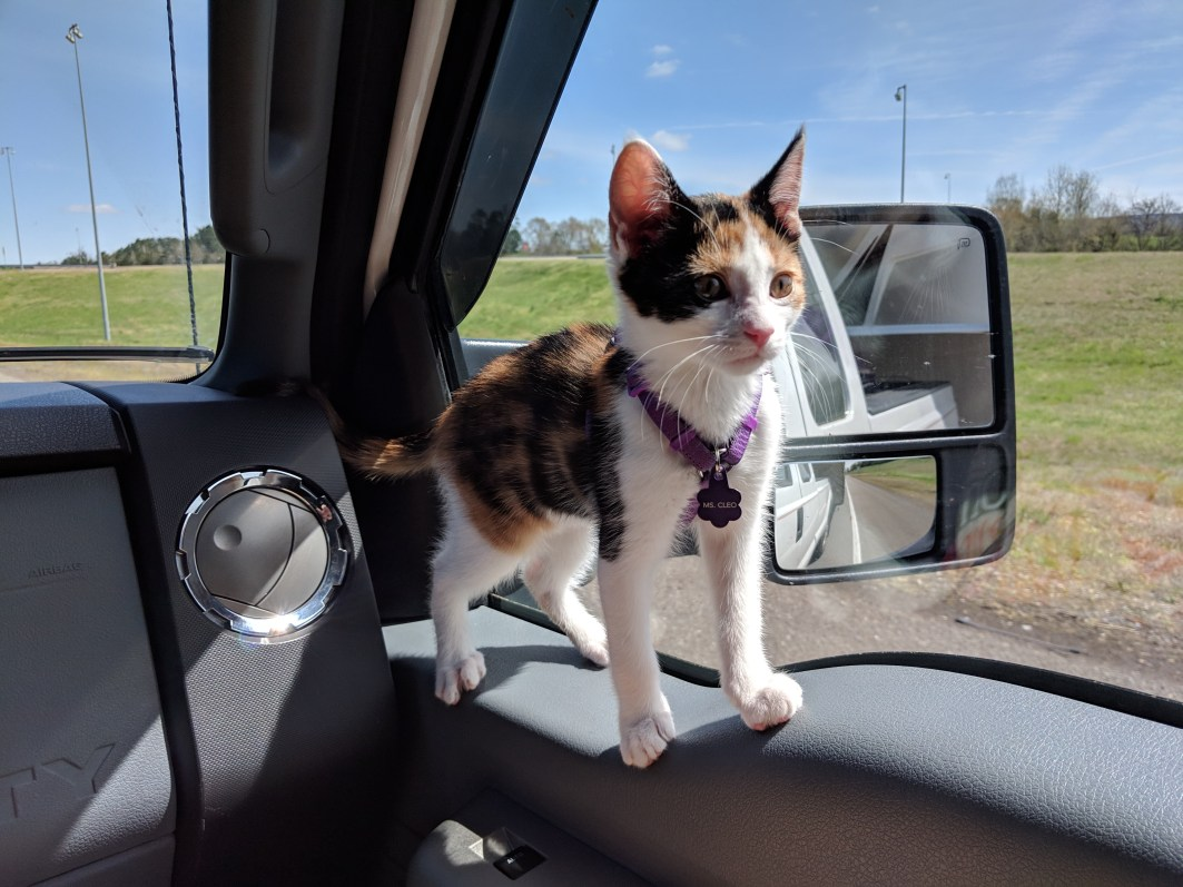 Her first time on the road...she was a natural!