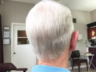 an over-the-comb tapered clipper cut
