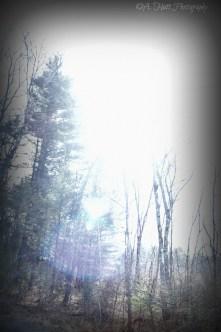 Pelham, Massachusetts Sun View