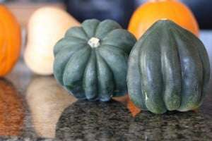 fall squash, acorn squash, squash recipe, easy fall squash recipe, vegeterian squash recipe