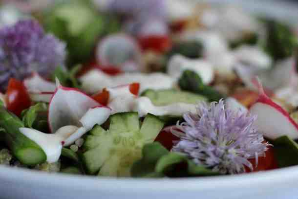 spring salad with tobys feta recipe