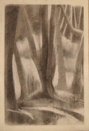 "Otis, Oregon, charcoal on paper, 24""x 18"", 2012"