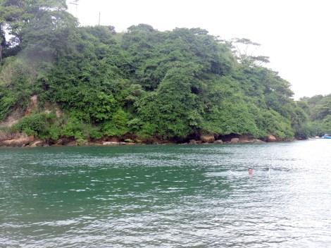 Brazo de agua de mar